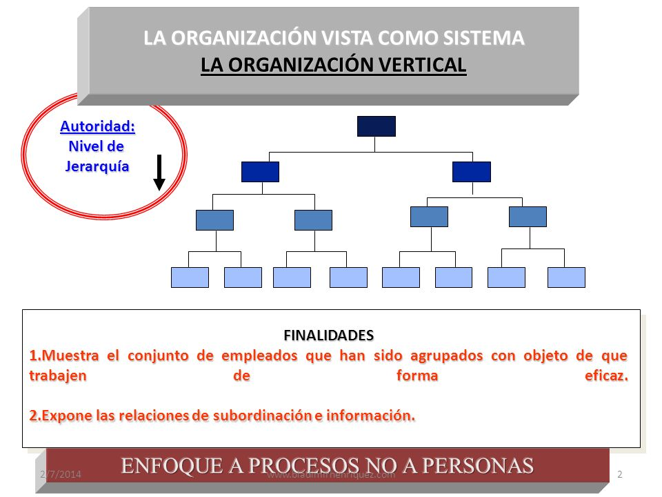 LA ORGANIZACIÓN VISTA COMO SISTEMA LA ORGANIZACIÓN VERTICAL