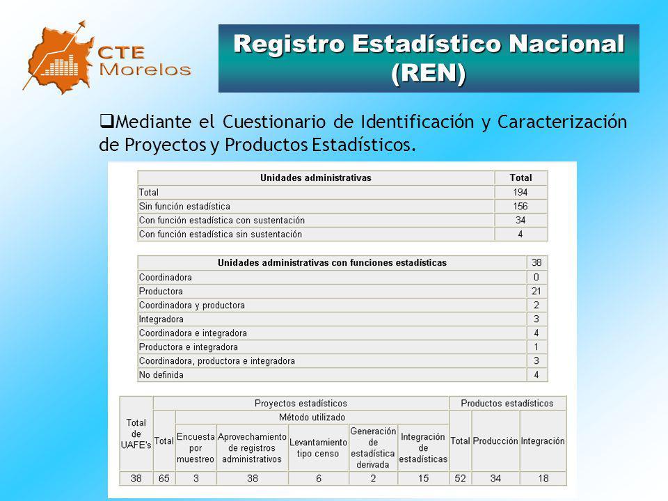 Registro Estadístico Nacional (REN)