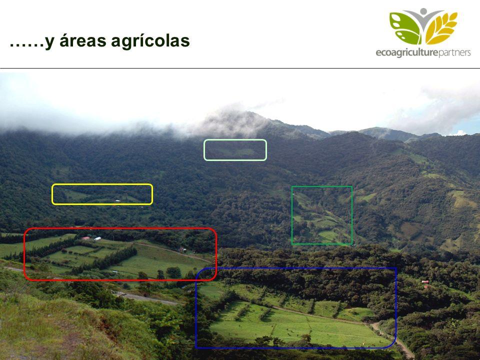 ……y áreas agrícolas 2
