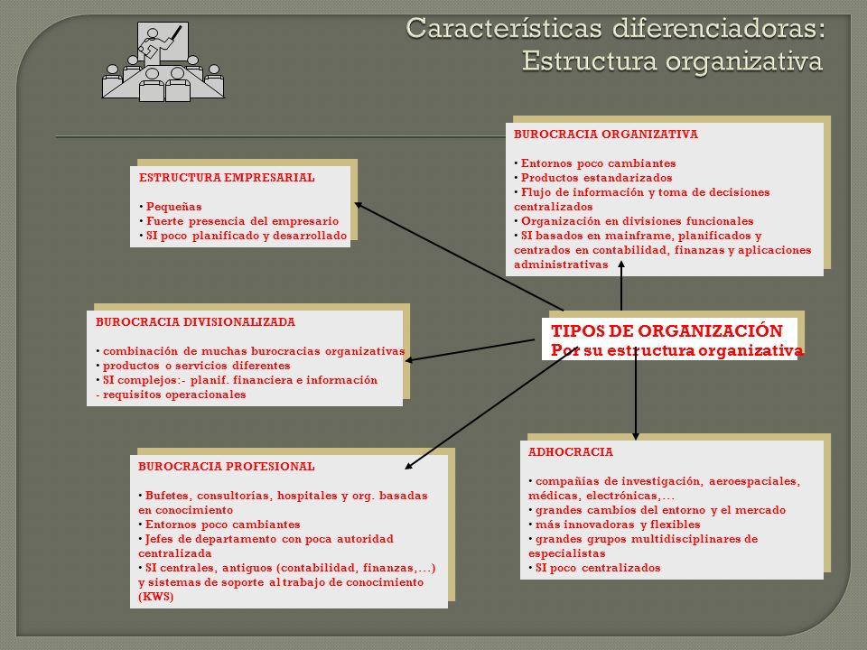 Características diferenciadoras: Estructura organizativa