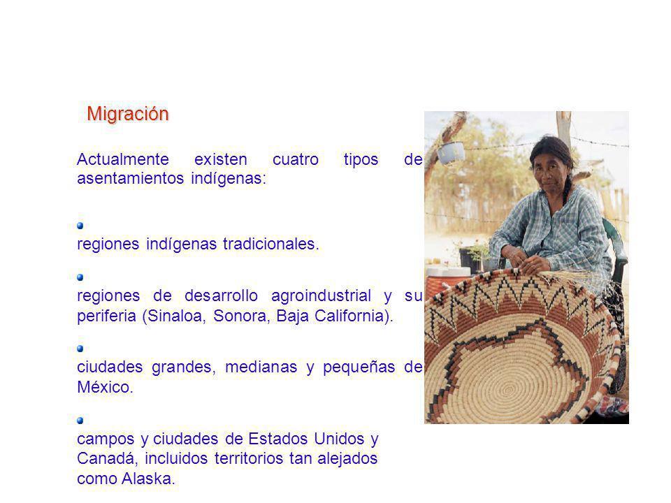 HActualmente existen cuatro tipos de asentamientos indígenas: