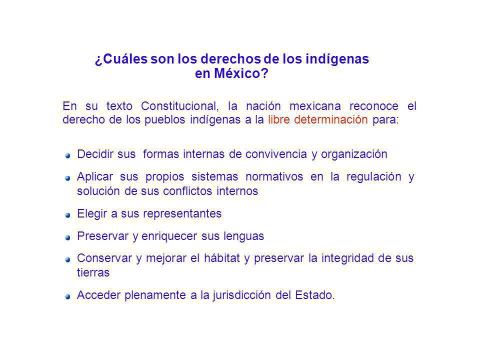 ¿Cuáles son los derechos de los indígenas en México