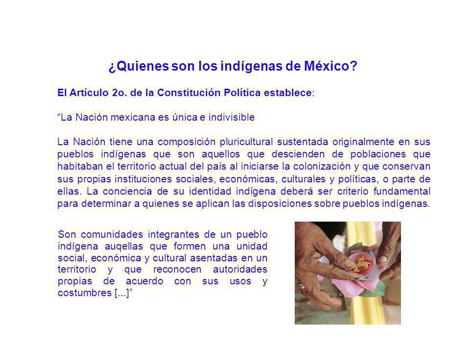 ¿Quienes son los indígenas de México