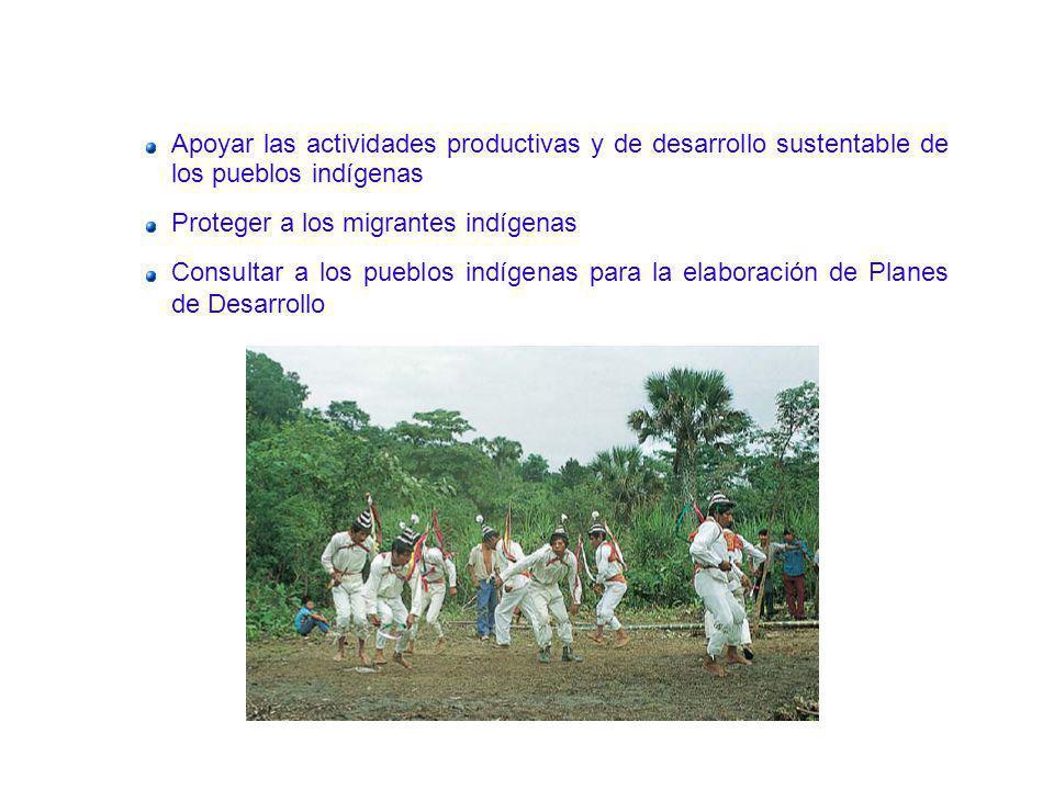 Apoyar las actividades productivas y de desarrollo sustentable de los pueblos indígenas