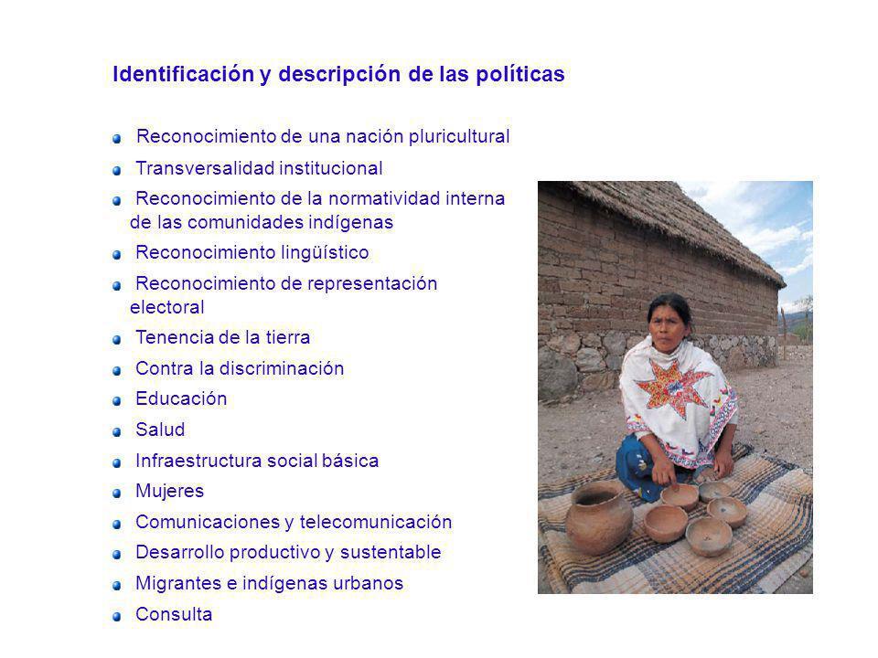 Identificación y descripción de las políticas