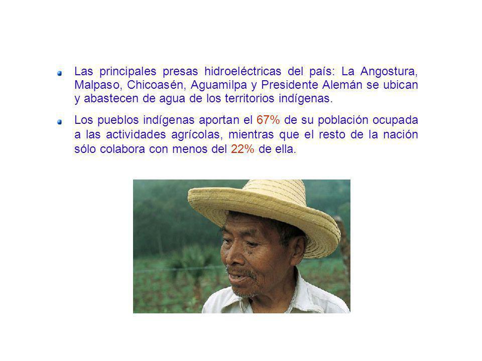 Las principales presas hidroeléctricas del país: La Angostura, Malpaso, Chicoasén, Aguamilpa y Presidente Alemán se ubican y abastecen de agua de los territorios indígenas.