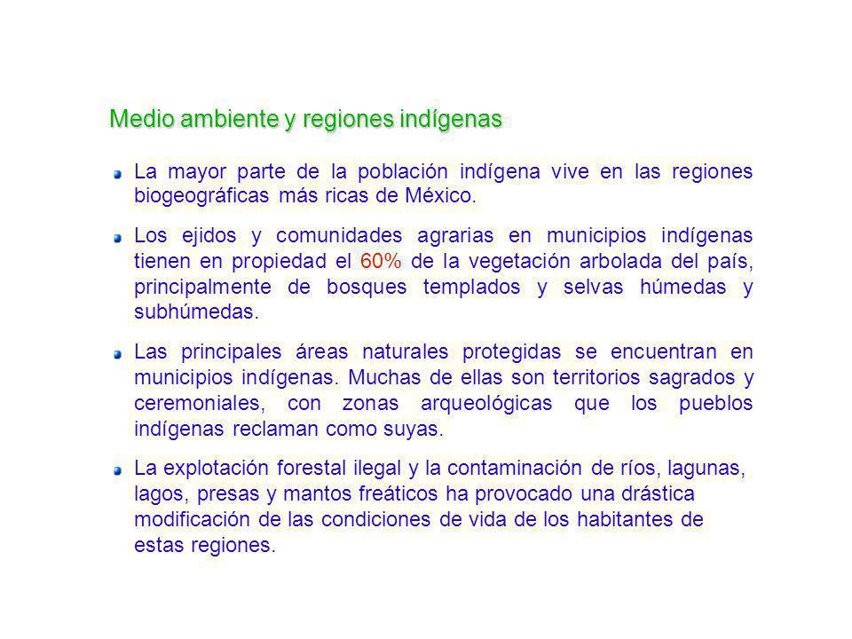Medio ambiente y regiones indígenas