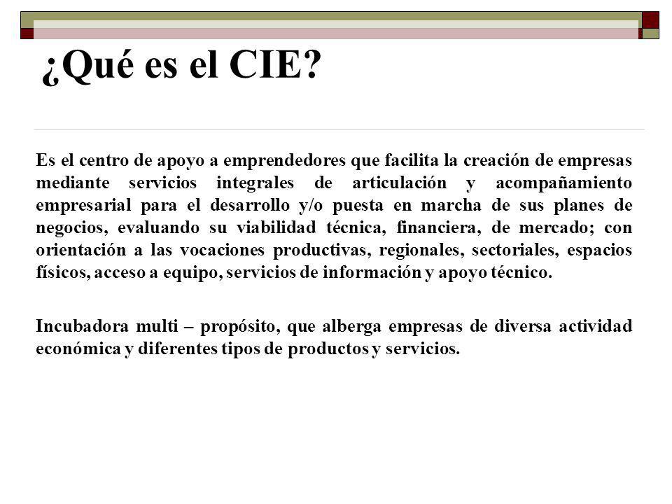 ¿Qué es el CIE