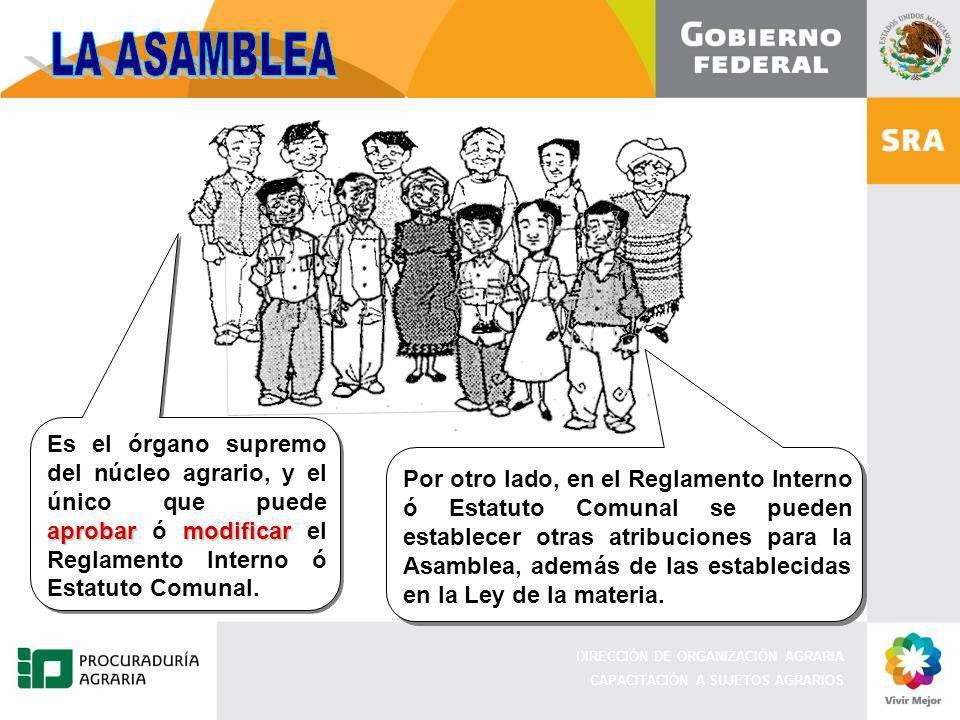LA ASAMBLEA Es el órgano supremo del núcleo agrario, y el único que puede aprobar ó modificar el Reglamento Interno ó Estatuto Comunal.
