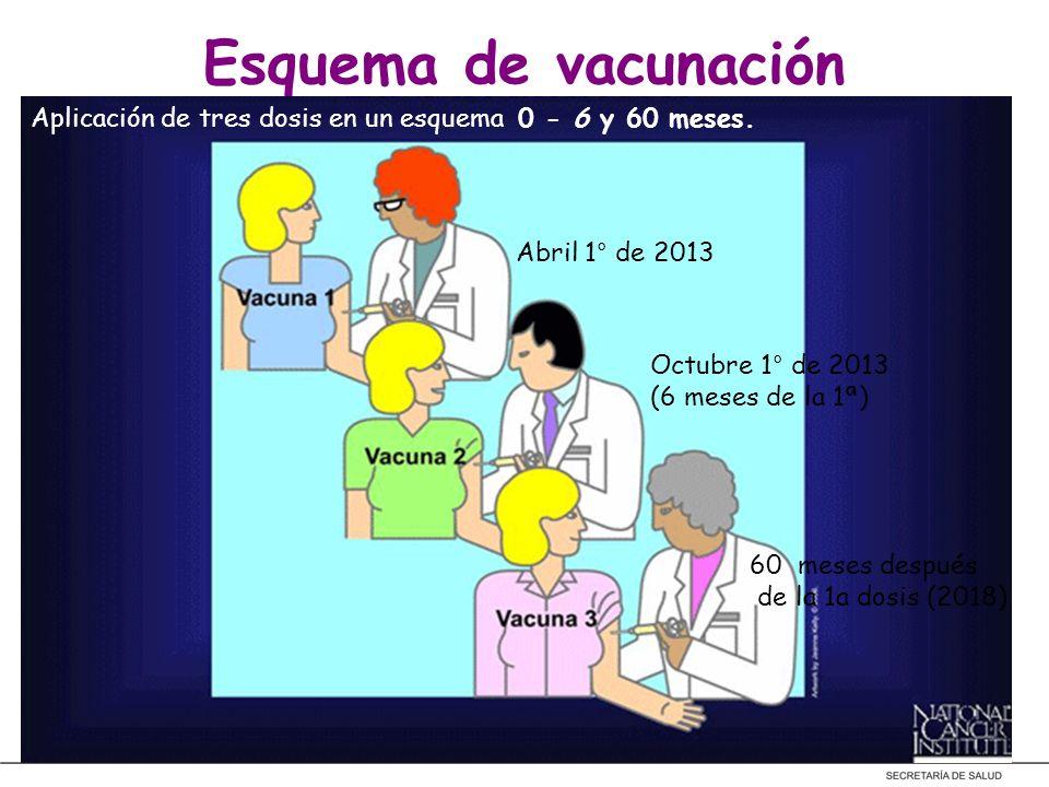 Esquema de vacunaciónAplicación de tres dosis en un esquema 0 - 6 y 60 meses. Abril 1° de 2013. Octubre 1° de 2013.