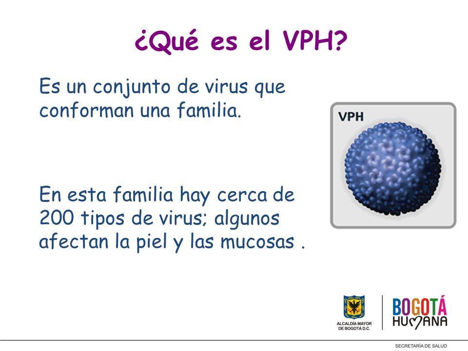 ¿Qué es el VPH Es un conjunto de virus que conforman una familia.