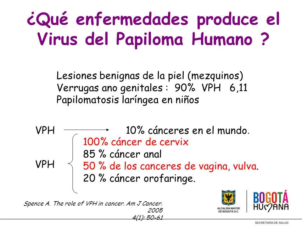 ¿Qué enfermedades produce el Virus del Papiloma Humano