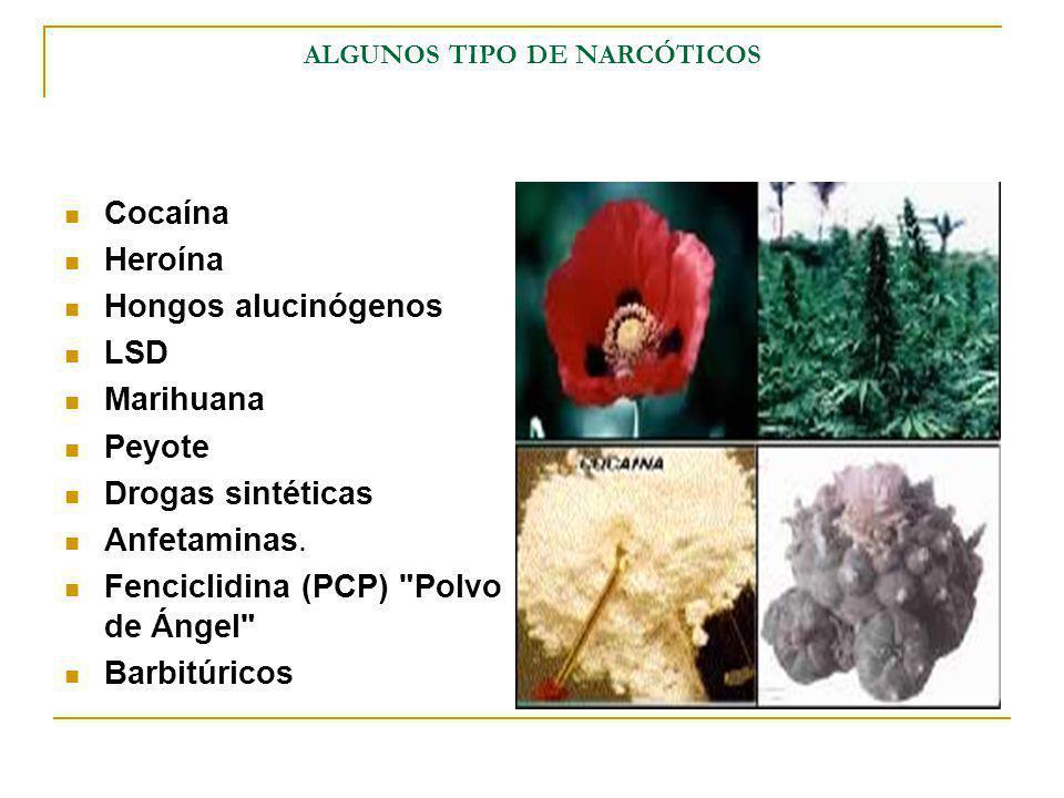 ALGUNOS TIPO DE NARCÓTICOS