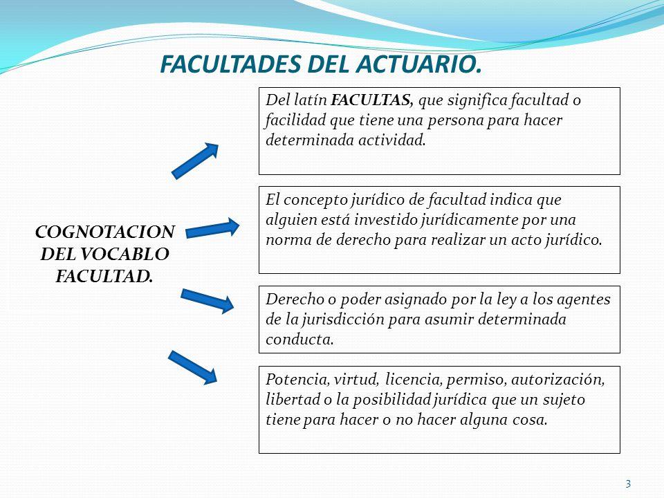 FACULTADES DEL ACTUARIO.