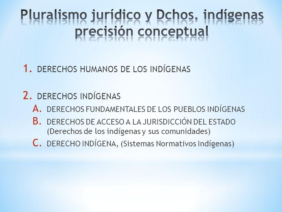 Pluralismo jurídico y Dchos. indígenas precisión conceptual
