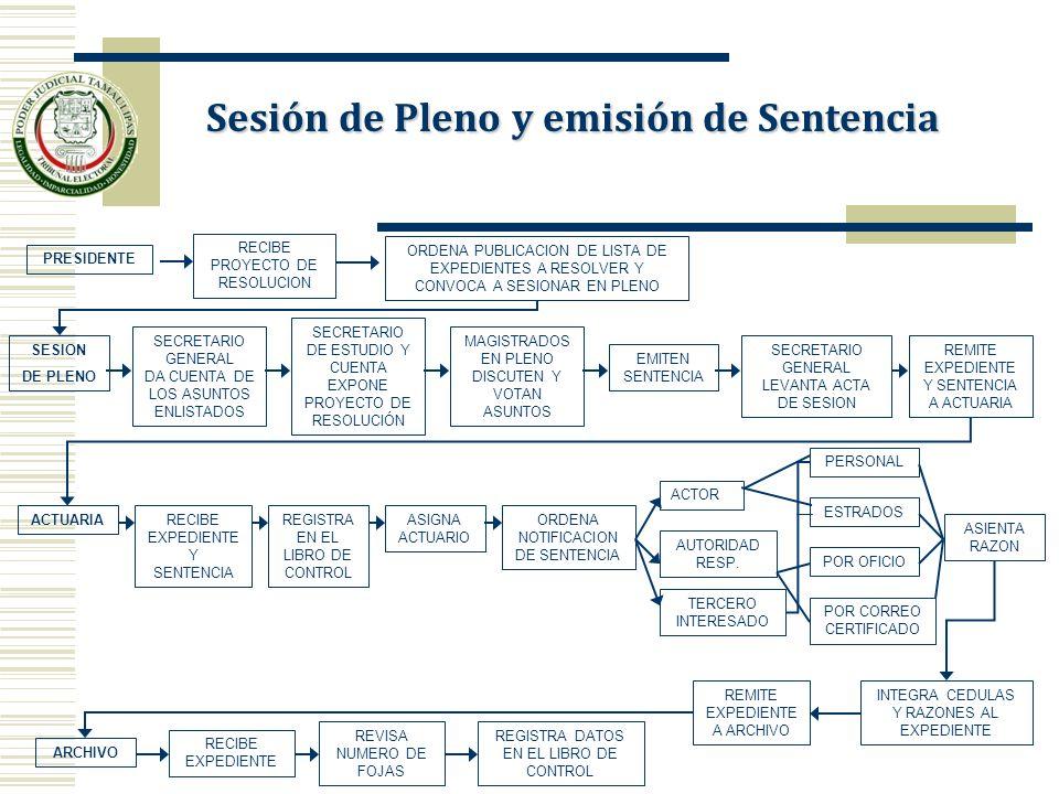 Sesión de Pleno y emisión de Sentencia