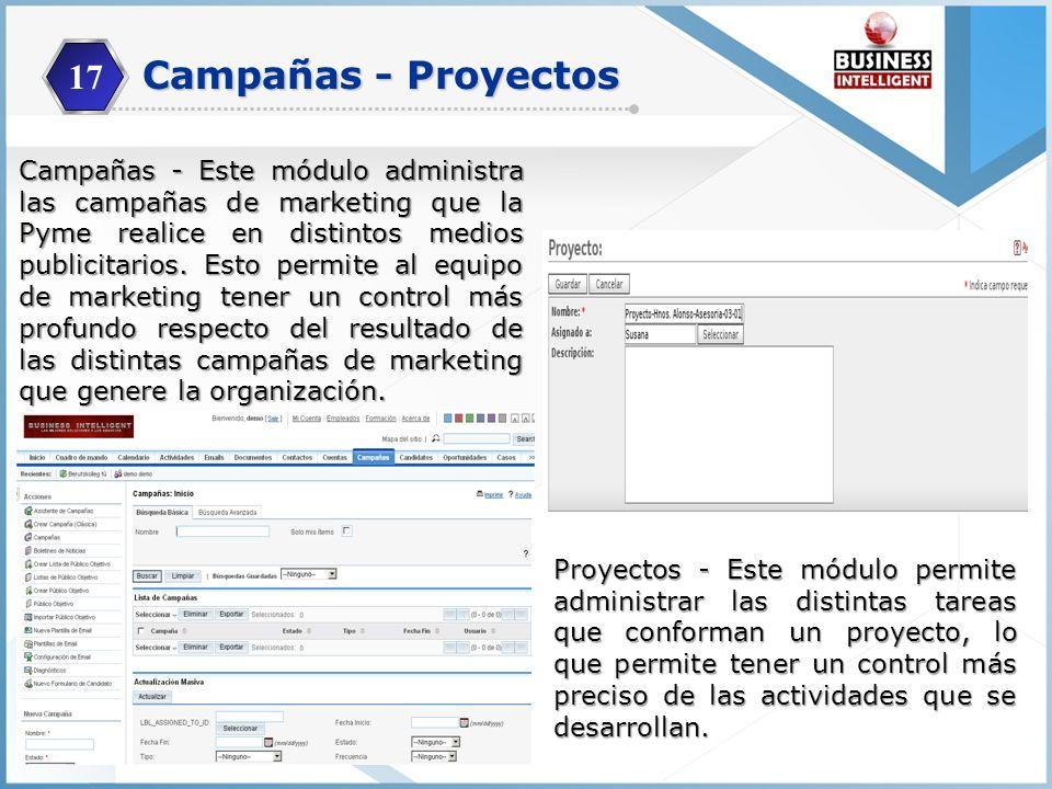 17 Campañas - Proyectos.