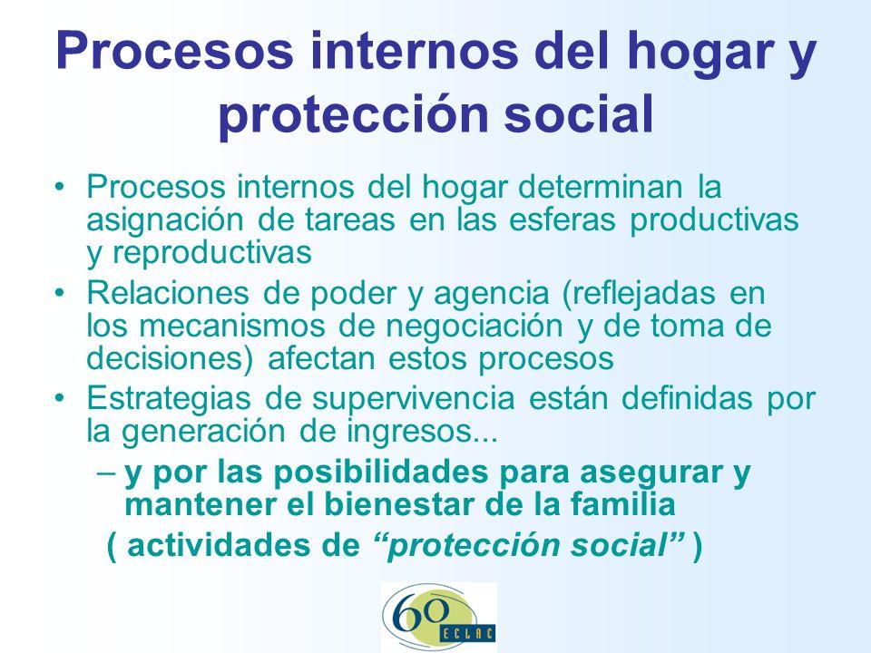 Procesos internos del hogar y protección social