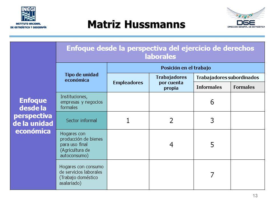 Matriz Hussmanns Enfoque desde la perspectiva de la unidad económica. Enfoque desde la perspectiva del ejercicio de derechos laborales.