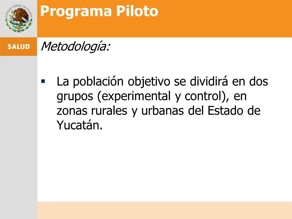 Programa Piloto Metodología: