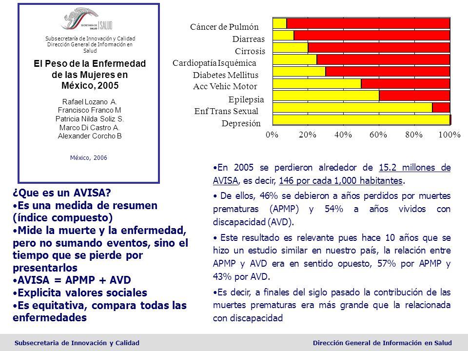 El Peso de la Enfermedad de las Mujeres en México, 2005