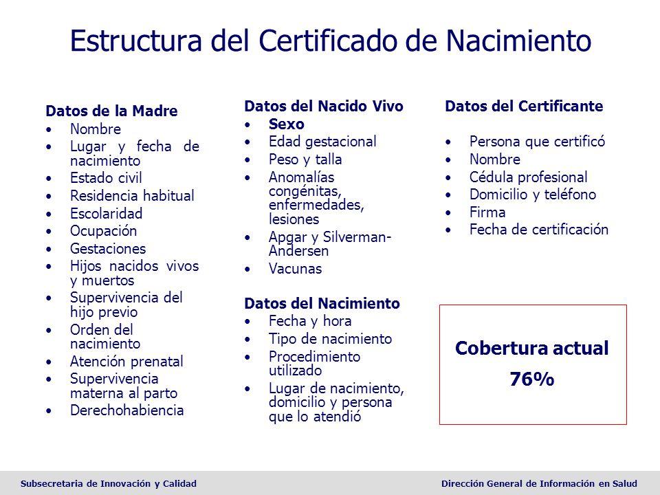 Estructura del Certificado de Nacimiento