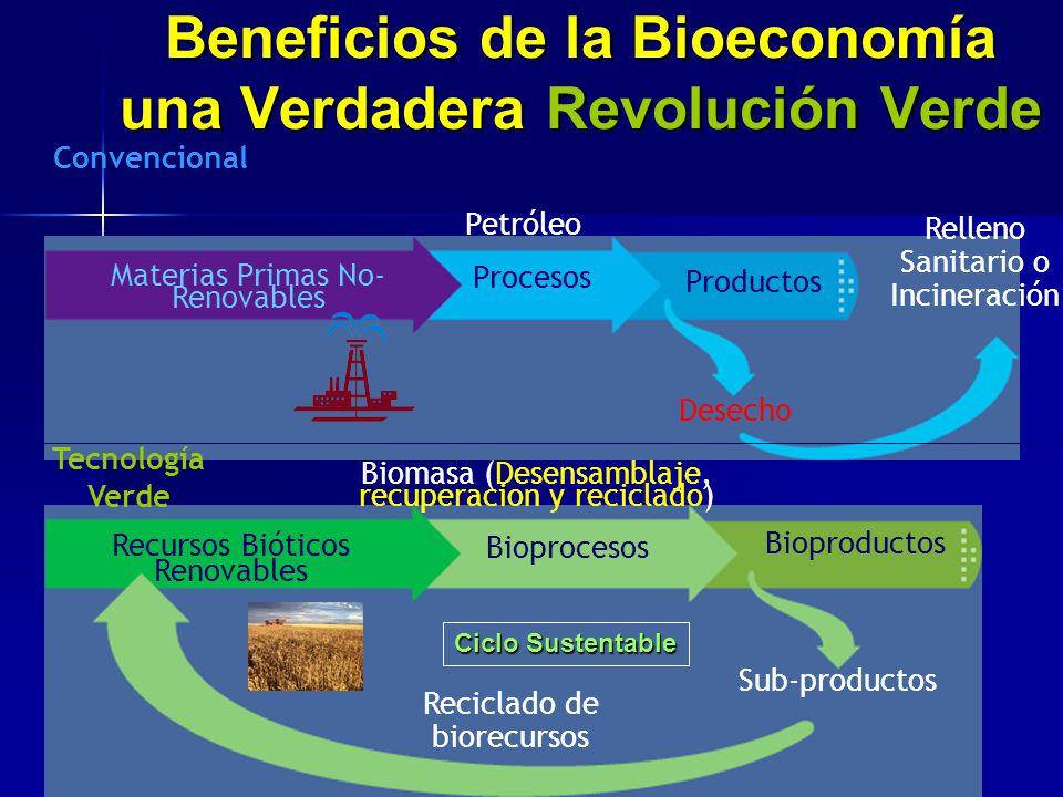 Beneficios de la Bioeconomía una Verdadera Revolución Verde