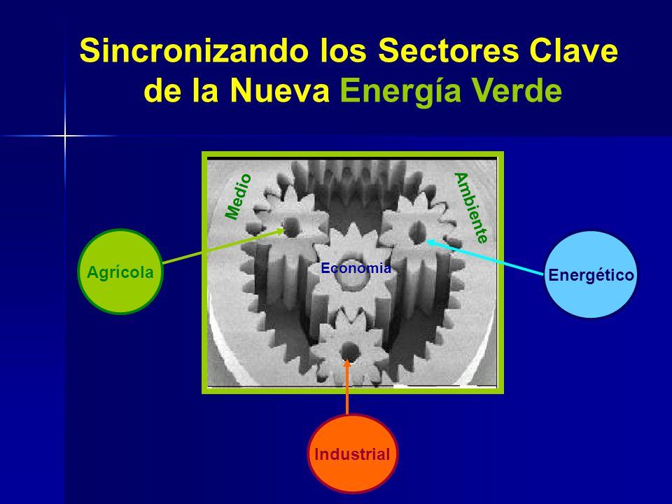 Sincronizando los Sectores Clave de la Nueva Energía Verde