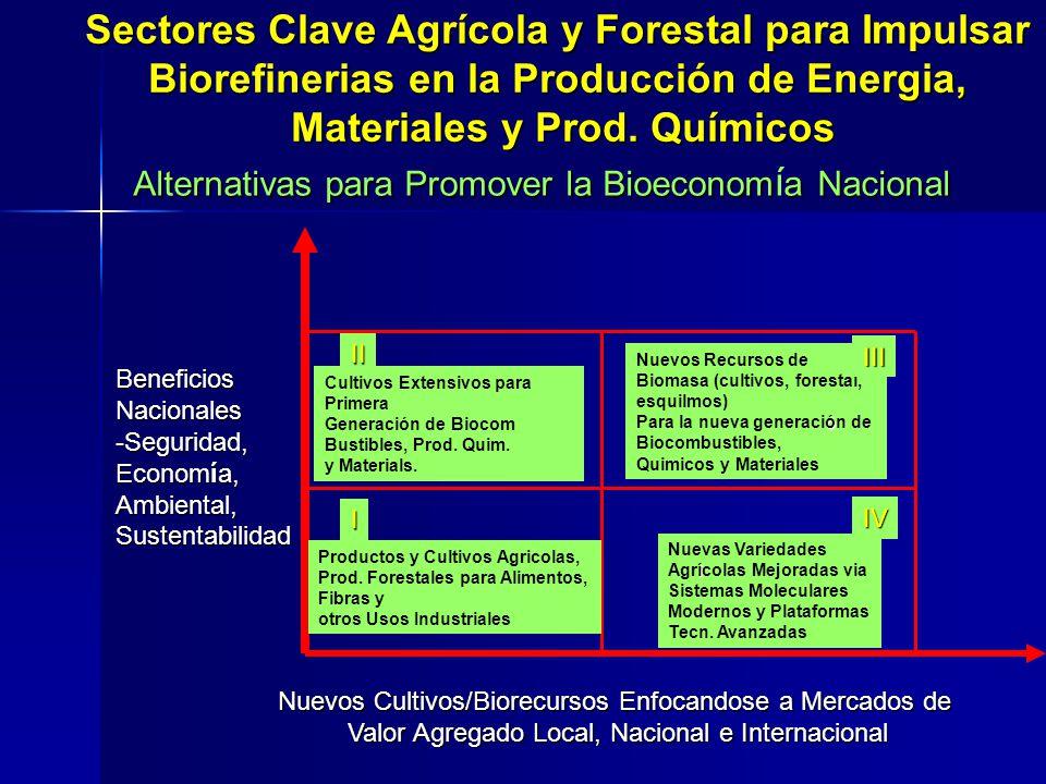 Sectores Clave Agrícola y Forestal para Impulsar