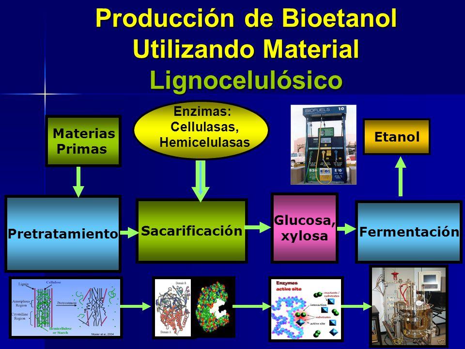 Producción de Bioetanol Utilizando Material Lignocelulósico