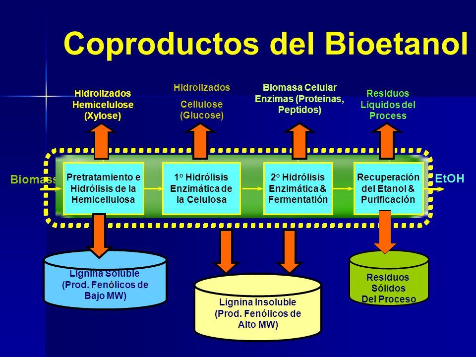 Coproductos del Bioetanol