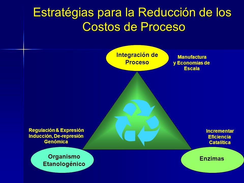 Regulación & Expresión Inducción, De-represión