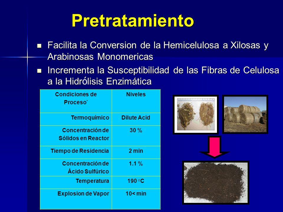 Pretratamiento Facilita la Conversion de la Hemicelulosa a Xilosas y Arabinosas Monomericas.