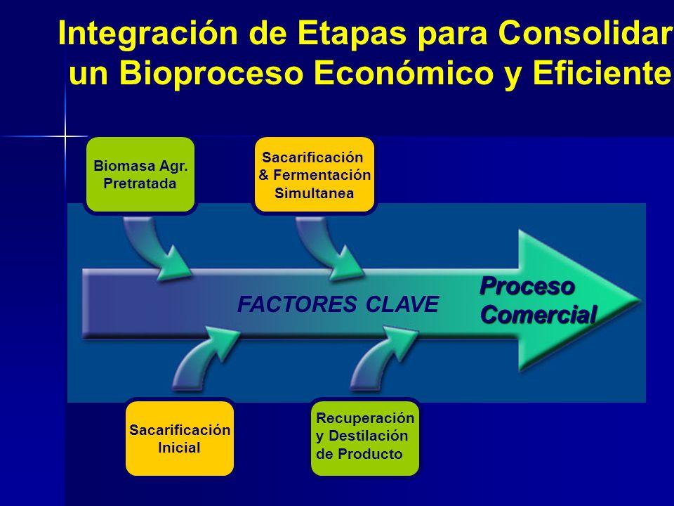 Integración de Etapas para Consolidar