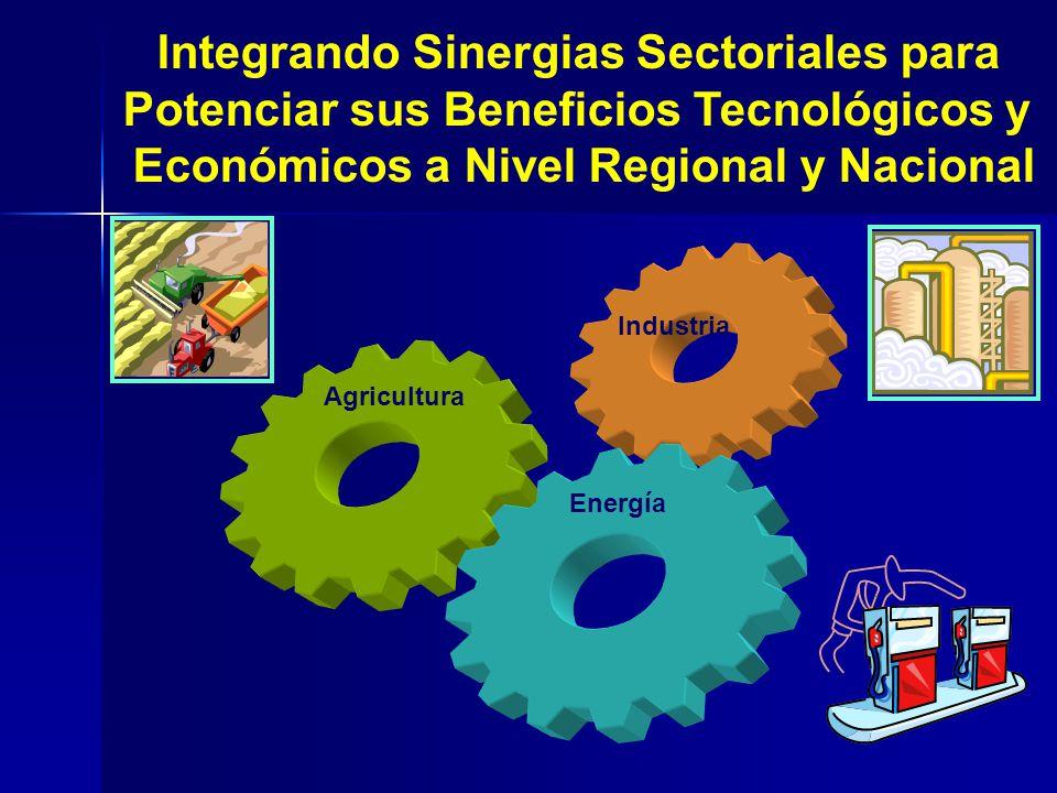 Integrando Sinergias Sectoriales para