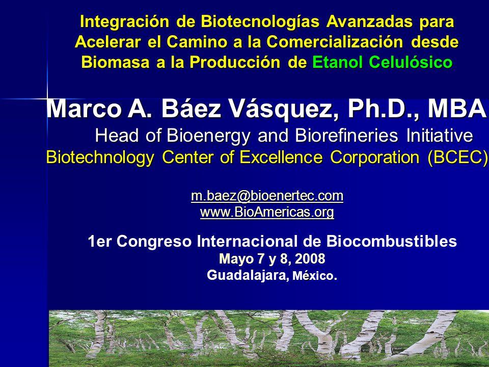 Marco A. Báez Vásquez, Ph.D., MBA