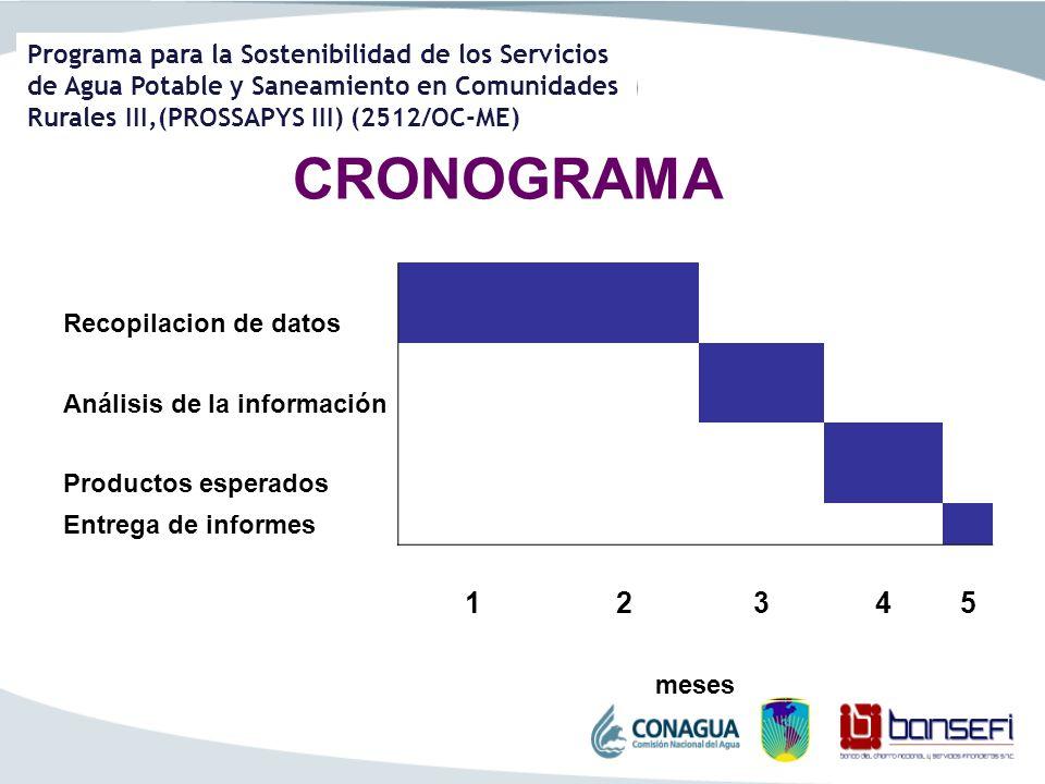 CRONOGRAMA 1 2 3 4 5 Recopilacion de datos Análisis de la información