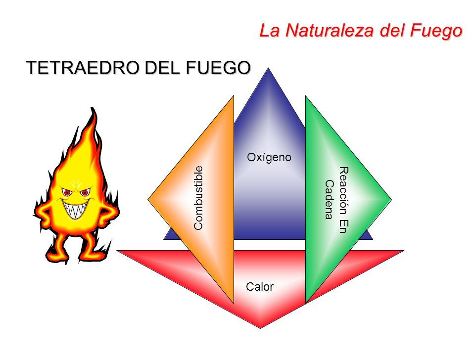 La Naturaleza del Fuego