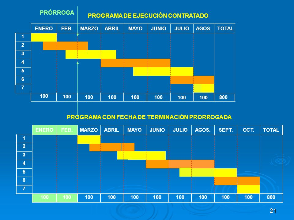 PROGRAMA DE EJECUCIÓN CONTRATADO