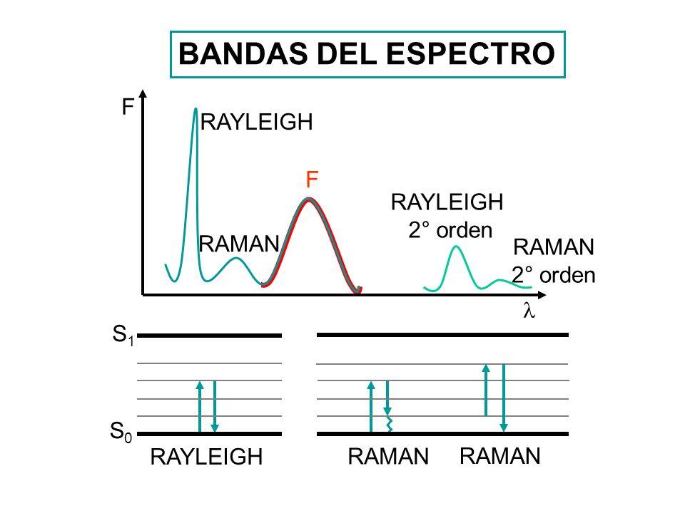 BANDAS DEL ESPECTRO F RAYLEIGH F RAYLEIGH 2° orden RAMAN RAMAN