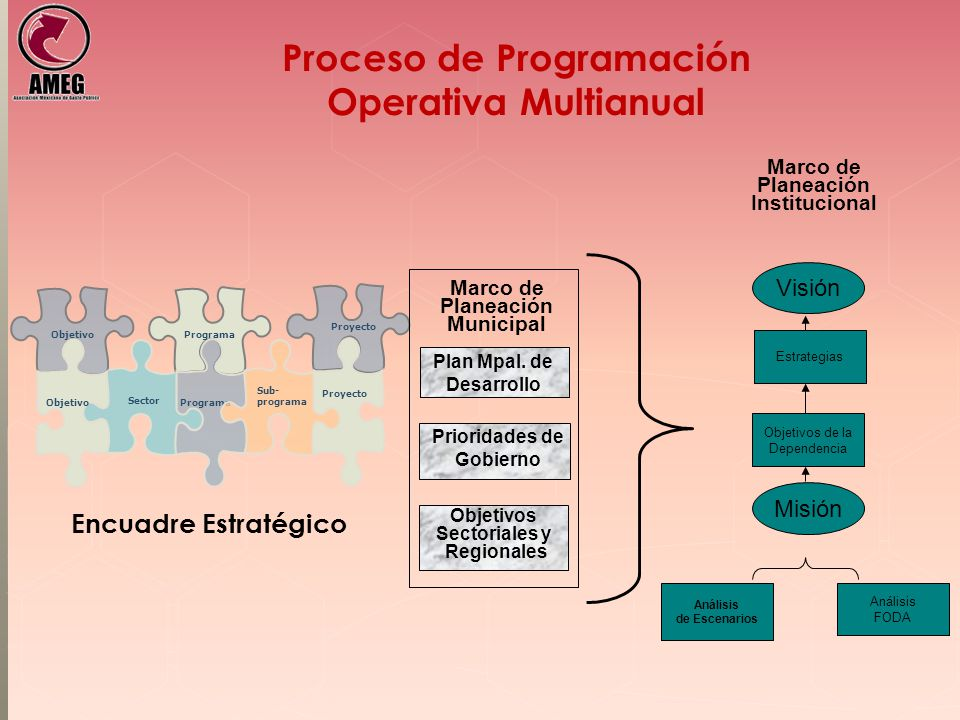 Proceso de Programación Operativa Multianual