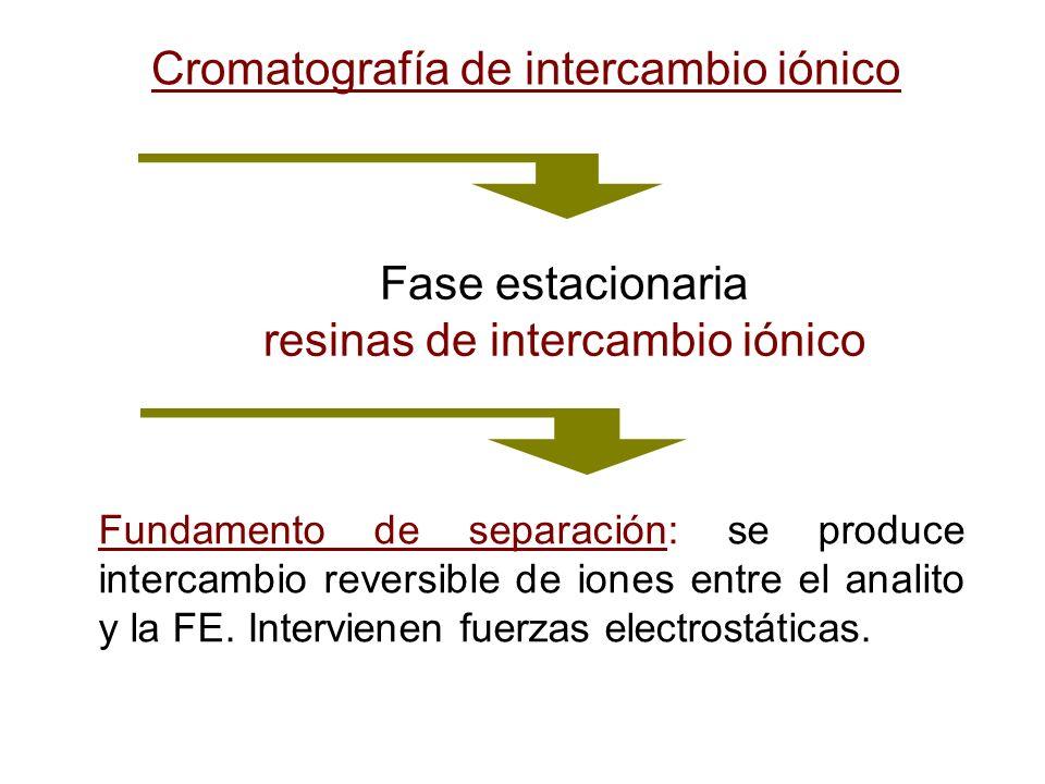 Cromatografía de intercambio iónico