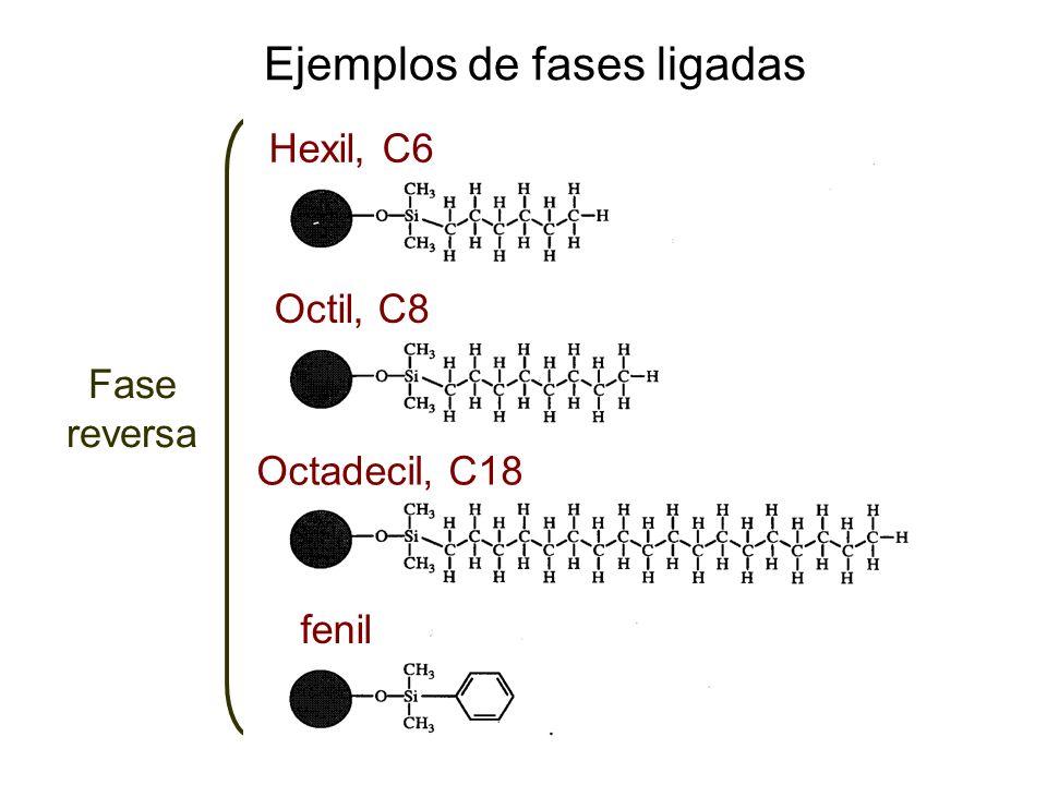 Ejemplos de fases ligadas