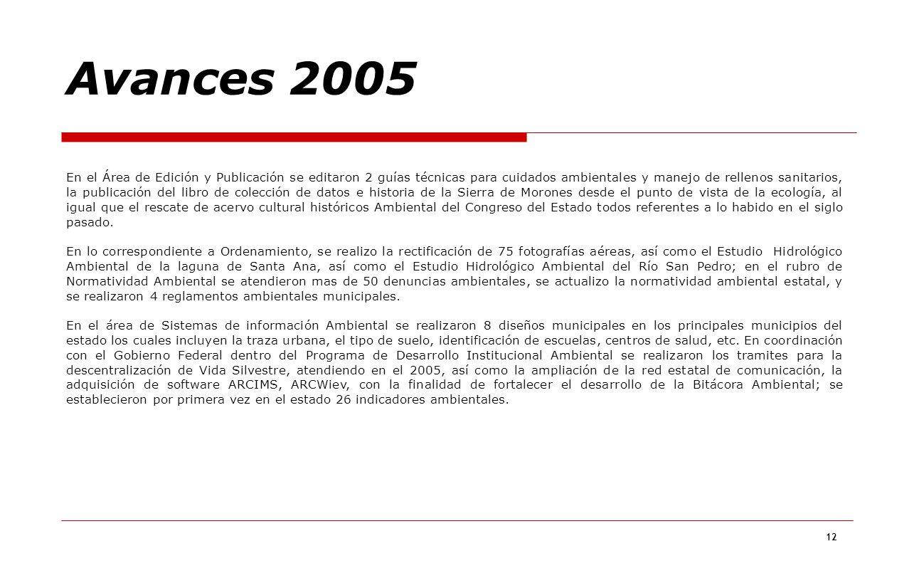 Avances 2005