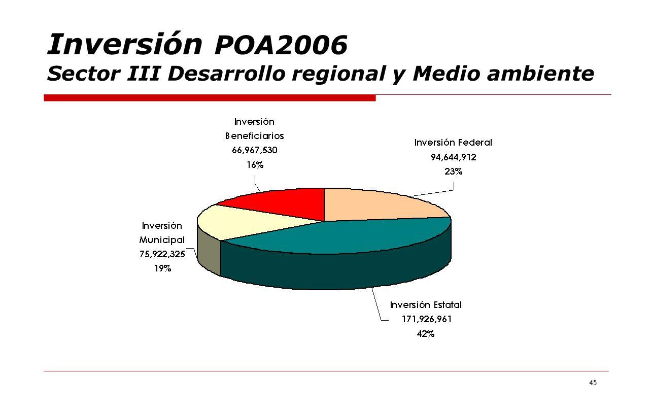 Inversión POA2006 Sector III Desarrollo regional y Medio ambiente