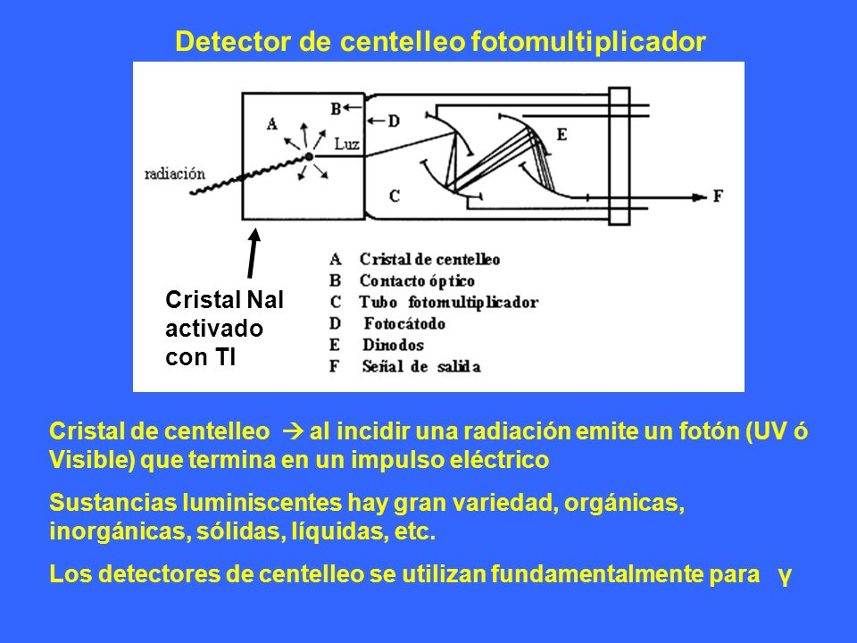 Detector de centelleo fotomultiplicador