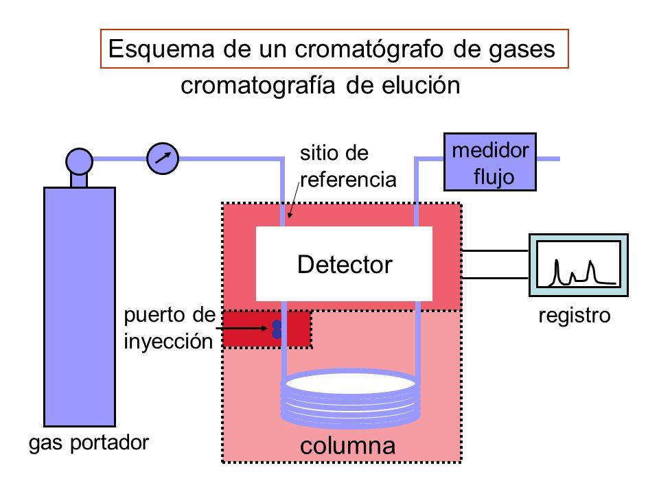 Esquema de un cromatógrafo de gases cromatografía de elución