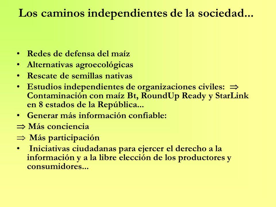 Los caminos independientes de la sociedad...