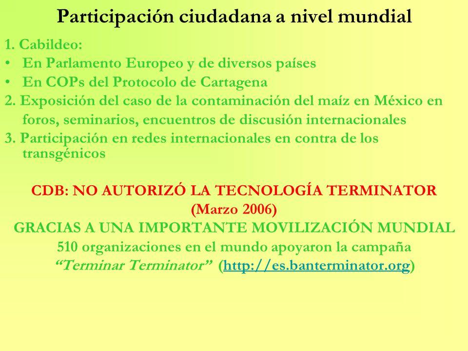 Participación ciudadana a nivel mundial