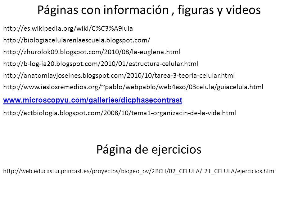 Páginas con información , figuras y videos